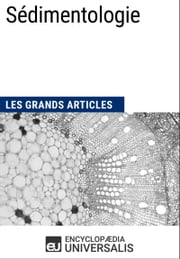 Sédimentologie - Les Grands Articles d'Universalis ebook by Encyclopaedia Universalis