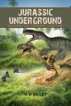 Jurassic Underground - Dinosaur Fossil Treasures to be Found ebook by R.V. Bailey