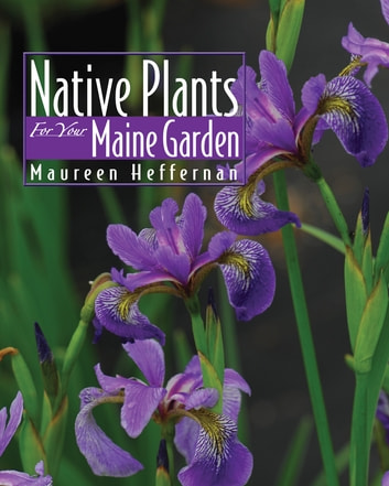Native Plants for Your Maine Garden ebook by Maureen Heffernan