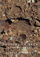 Nothing Is Seen ebook by Yaakov Ben-David