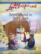 Snowbound in Dry Creek ebook by Janet Tronstad