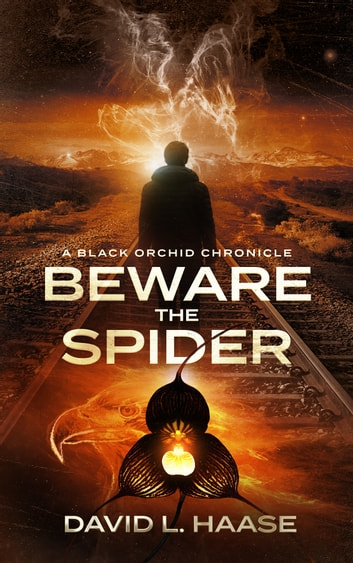 Beware the Spider ebook by David L. Haase