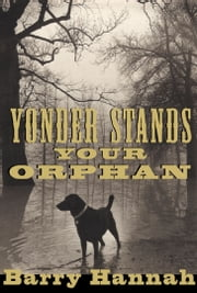 Yonder Stands Your Orphan ebook by Barry Hannah