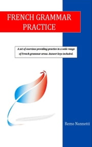 French Grammar Practice ebook by Remo Nannetti