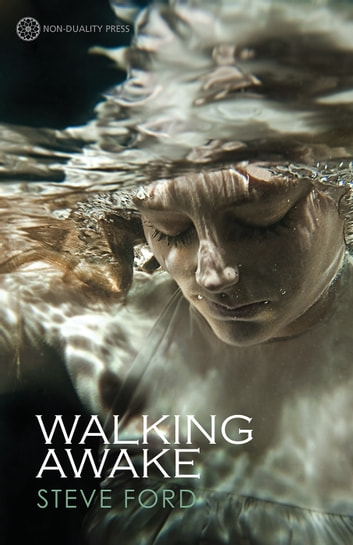 Walking Awake ebook by Steve Ford