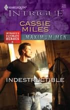 Indestructible eBook by Cassie Miles