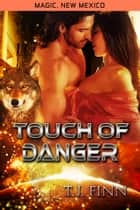 Touch of Danger ebook by TJ Finn