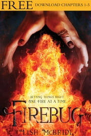 Firebug, Chapters 1-5 ebook by Lish McBride
