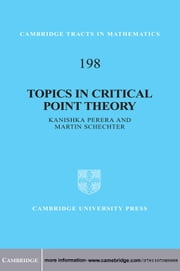 Topics in Critical Point Theory ebook by Martin Schechter,Kanishka Perera