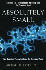 Absolutely Small, Chapter 12 ebook by Michael D. FAYER