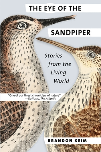 The Eye of the Sandpiper - Stories from the Living World ebook by Brandon Keim