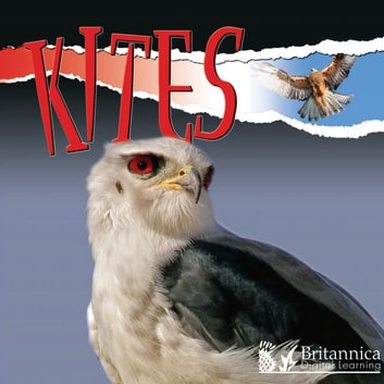 Kites ebook by Julie Lundgren