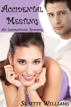 Accidental Meeting ebook by Susette Williams