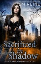 Sacrificed in Shadow - An Urban Fantasy Mystery ebook by SM Reine