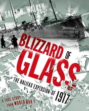 Blizzard of Glass - The Halifax Explosion of 1917 ebook by Sally M Walker