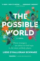 The Possible World - A Novel ebook by Liese O'Halloran Schwarz