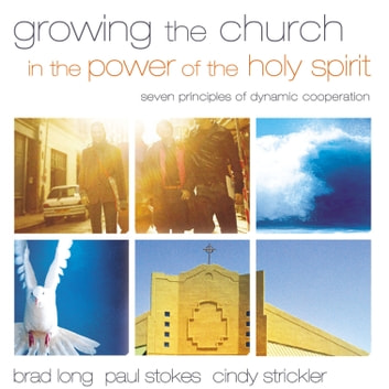 Growing the Church in the Power of the Holy Spirit - Seven Principles of Dynamic Cooperation audiobook by Brad Long,Paul K. Stokes,Cindy Strickler