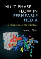 Multiphase Flow in Permeable Media - A Pore-Scale Perspective ebook by Martin J. Blunt