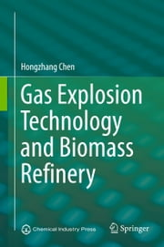 Gas Explosion Technology and Biomass Refinery ebook by Hongzhang Chen