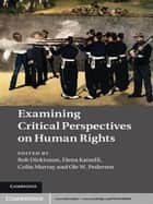 Examining Critical Perspectives on Human Rights ebook by Rob Dickinson,Elena Katselli,Colin Murray,Ole W. Pedersen