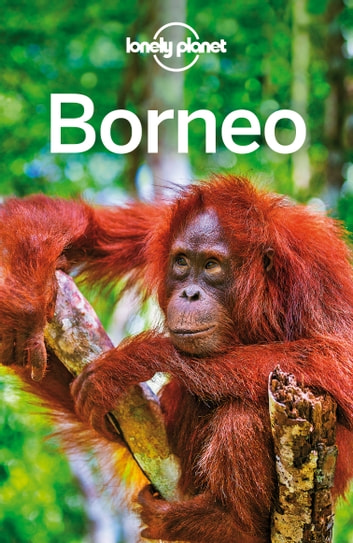 Lonely Planet Borneo ebook by Lonely Planet,Isabel Albiston,Loren Bell,Richard Waters