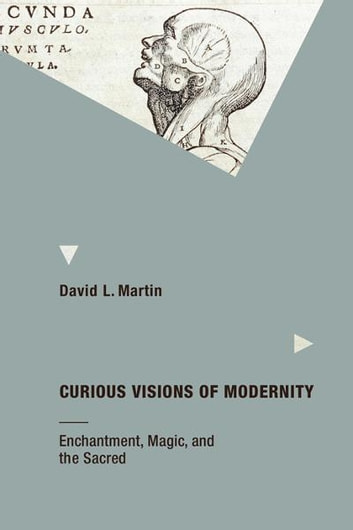 Curious Visions of Modernity: Enchantment, Magic, and the Sacred ebook by David L Martin