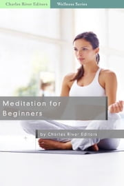 Meditation for Beginners ebook by Michael Solis