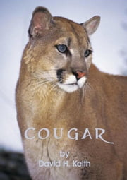 Cougar ebook by David H. Keith