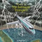 Where is the Bermuda Triangle? audiobook by Megan Stine, Who HQ, Lisa Larsen