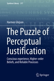The Puzzle of Perceptual Justification - Conscious experience, Higher-order Beliefs, and Reliable Processes ebook by Harmen Ghijsen