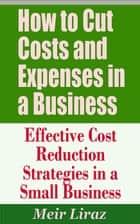 How to Cut Costs and Expenses in a Business: Effective Cost Reduction Strategies in a Small Business ebook by Meir Liraz