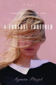A Fortune Foretold - A Novel ebook by Agneta Pleijel