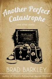 Another Perfect Catastrophe ebook by Brad Barkley