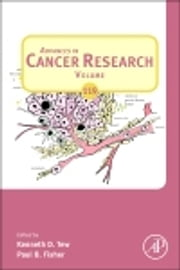 Advances in Cancer Research ebook by Paul Fisher,Kenneth D Tew