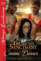 Trust in Sanctuary ebook by Corinne Davies