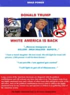 Donald Trump - Old America is Back ebook by Brad Power