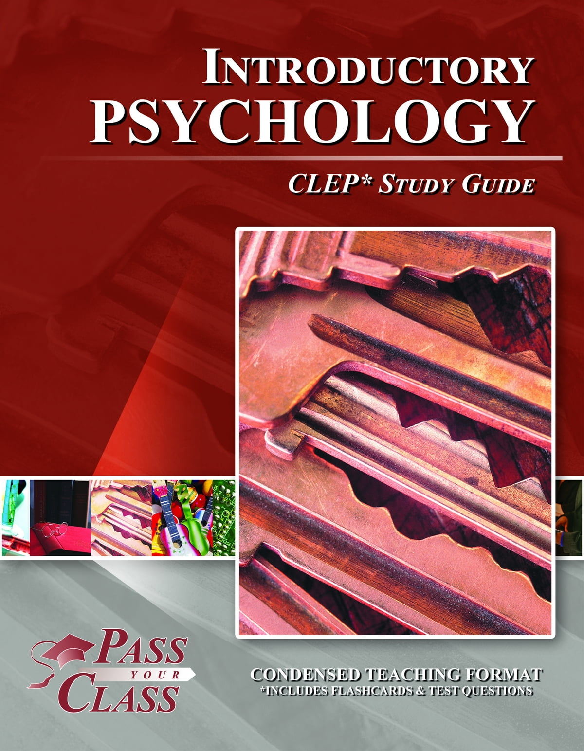 CLEP Introductory Psychology Test Study Guide ebook by Pass Your Class  Study Guides - Rakuten Kobo