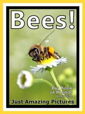 Just Bee Photos! Big Book of Photographs & Pictures of Bees, Vol. 1 ebook by Big Book of Photos