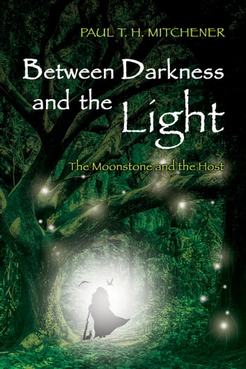 Between Darkness and the Light ebook by Paul T. H. Mitchener