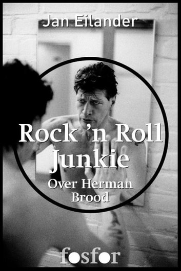 Rock n Roll Junkie - over Herman Brood ebook by Jan Eilander,Martin Bril