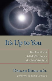 It's Up to You - The Practice of Self-Reflection on the Buddhist Path ebook by Dzigar Kongtrul,Helen Berliner