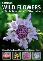 Common Wild Flowers of Table Mountain & Silvermine ebook by Hugh Clarke,Bruce Mackenzie,Corinne Merry