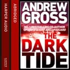 The Dark Tide audiobook by Andrew Gross, Kati Nicholl