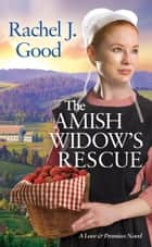 The Amish Widow's Rescue ebook by
