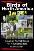 Birds of North America For Kids: Amazing Animal Books for Young Readers ebook by John Davidson
