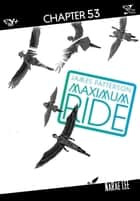 Maximum Ride: The Manga, Chapter 53 ebook by James Patterson,NaRae Lee