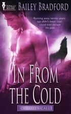 In from the Cold ebook by Bailey Bradford