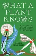 What a Plant Knows ebook by Daniel Chamovitz