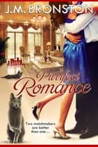 A Purrfect Romance ebook by J.M. Bronston