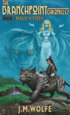 Magic's Fire: Book One in the Branchpoint Chronicles ebook by Jerry Wolfe